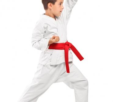 Kyokushinkai inf. edad: 5-10
